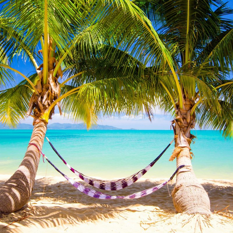 10 New Tropical Pictures Free Download FULL HD 1080p For PC Background 2020 free download free beautiful tropical places for vacation wallpaper apk download 800x800