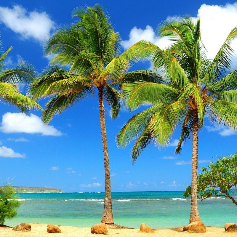10 Top Caribbean Beaches Wallpaper Desktop FULL HD 1080p For PC Desktop 2020 free download %name