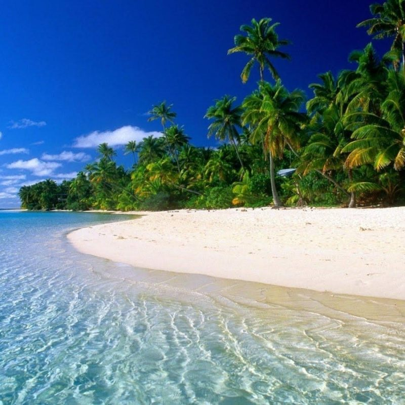 10 Best Caribbean Beach Pictures Wallpaper FULL HD 1920×1080 For PC Desktop 2018 free download free caribbean beach wallpapers wallpaper cave 2 800x800