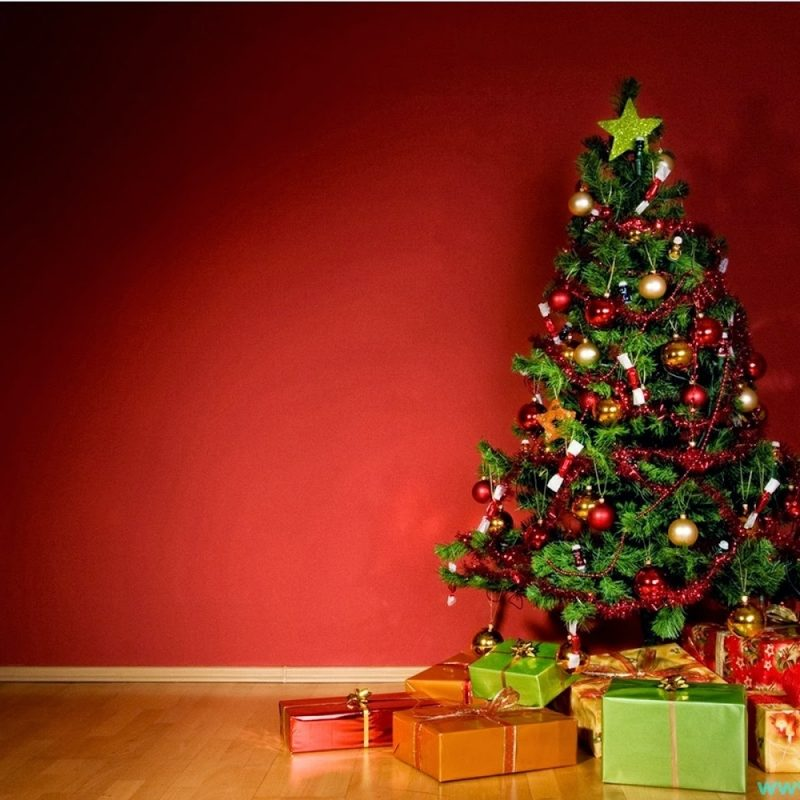 10 Latest Christmas Tree Wall Paper FULL HD 1080p For PC Background 2018 free download free christmas tree wallpapers mobile long wallpapers 800x800