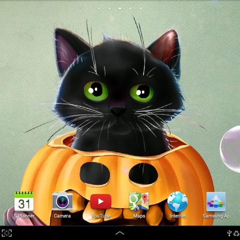 10 Top Free Cute Halloween Backgrounds FULL HD 1920×1080 For PC Background 2018 free download free cute halloween wallpaper 6whntvpqoe4w7u5bcgixowpnw 800x800