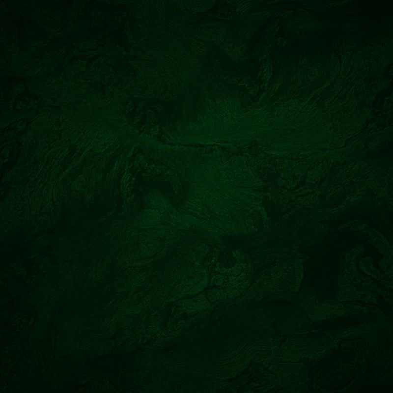 10 Most Popular Plain Dark Green Background FULL HD 1080p For PC Background 2021 free download free dark green wallpaper picture long wallpapers 800x800
