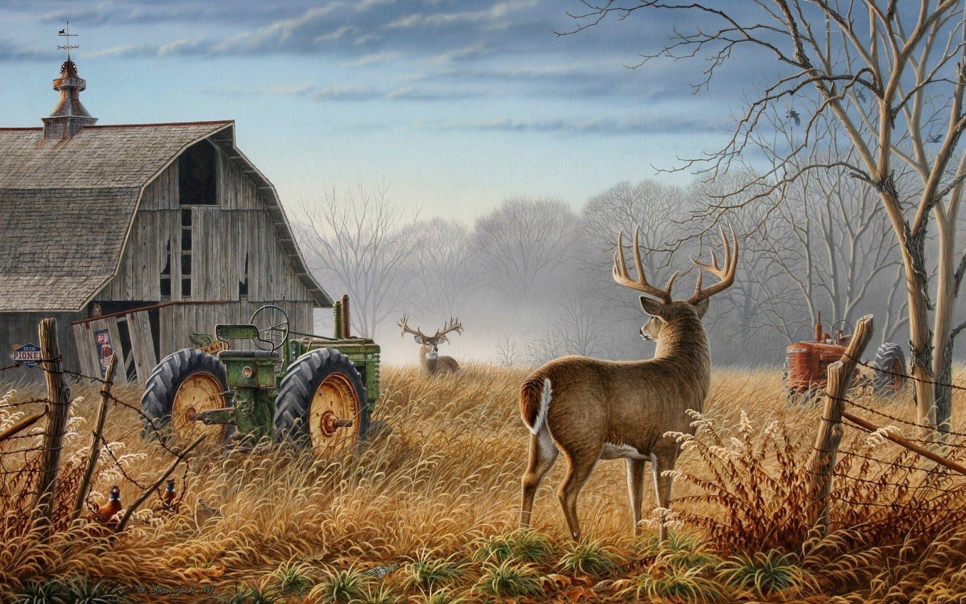free deer wallpapers wallpaper | hd wallpapers | pinterest