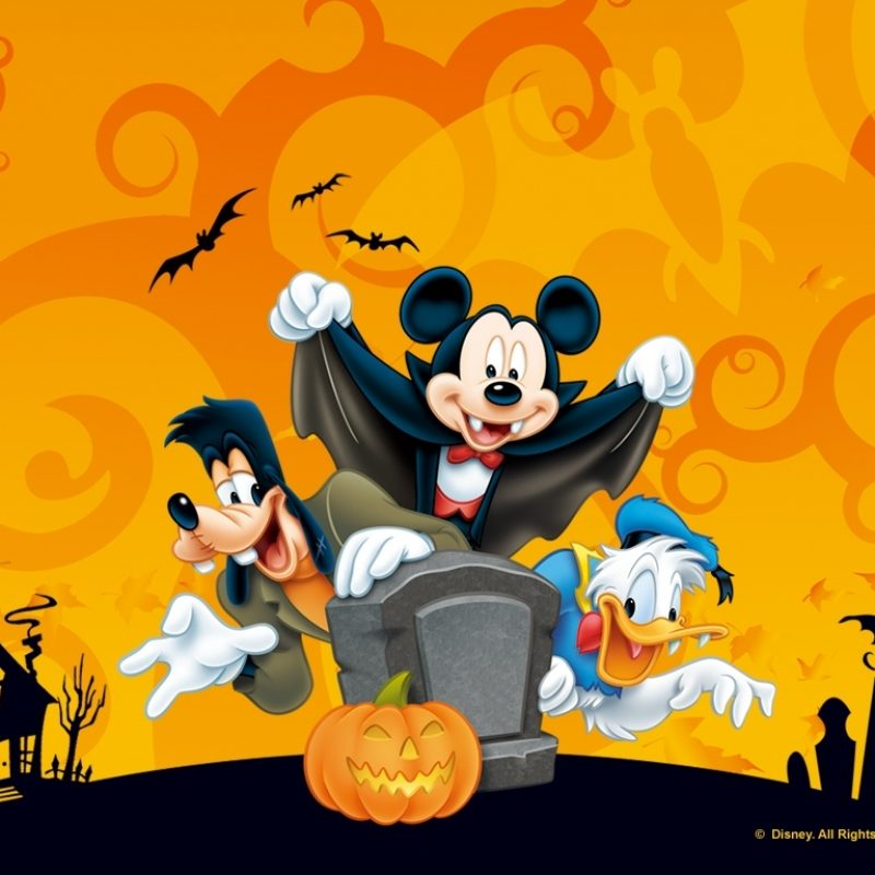 10 Latest Cute Disney Halloween Wallpaper FULL HD 1080p For PC Desktop 2018 free download free desktop wallpaper disney halloween wallpaper 1 800x800
