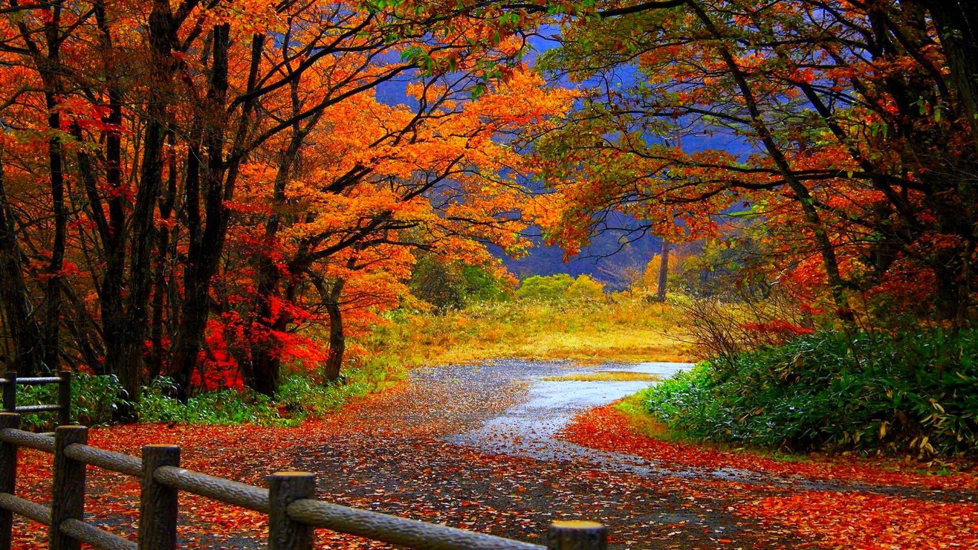 free desktop wallpapers fall scenes - wallpaper cave | fall scenes