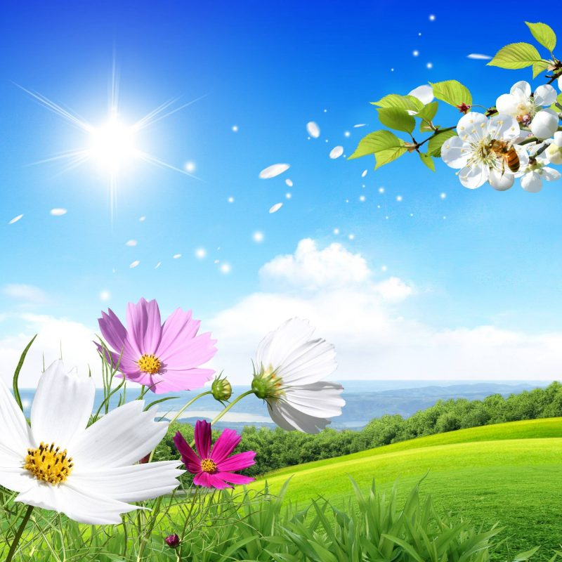 10 New Spring Scenery Wallpaper Widescreen FULL HD 1920×1080 For PC Desktop 2020 free download free desktop wallpapers spring scenes wallpaper cave 2 800x800