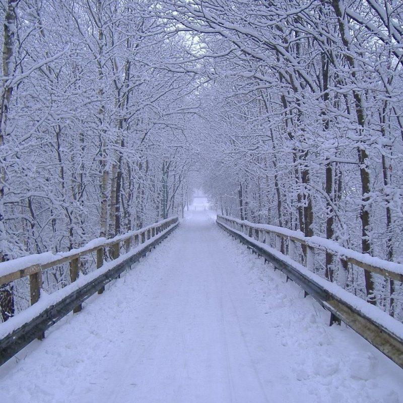 10 Latest Free Winter Scene Screensavers FULL HD 1920×1080 For PC Background 2020 free download free desktop wallpapers winter scenes wallpaper cave 16 800x800