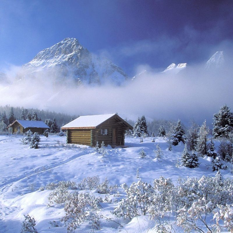 10 Latest Winter Scenes Wallpapers Free FULL HD 1920×1080 For PC Background 2018 free download free desktop wallpapers winter scenes wallpaper cave 17 800x800