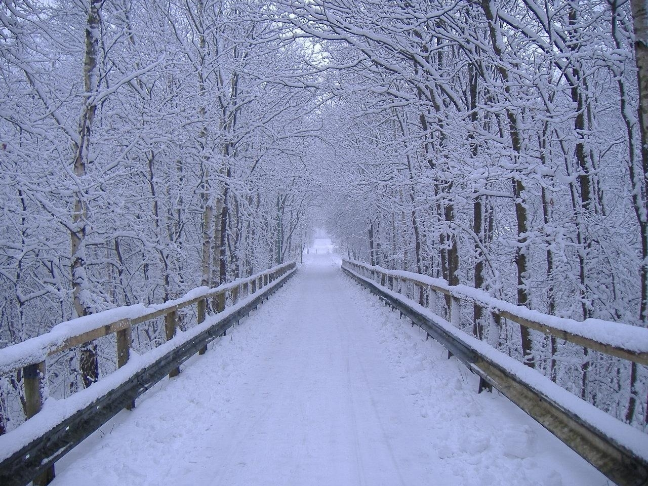 Title Free Desktop Wallpapers Winter Scenes Wallpaper Cave Dimension 1280 X 960 File Type JPG JPEG