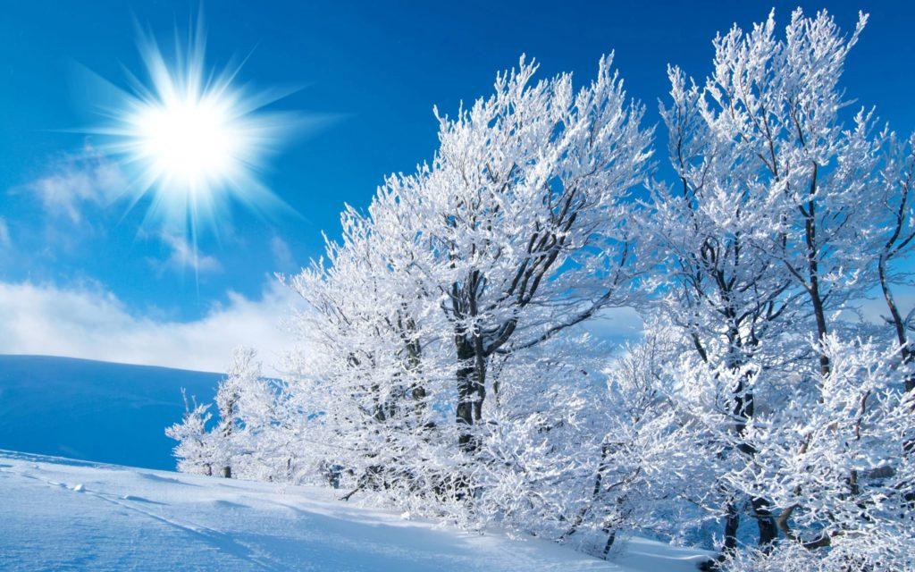 10 New Winter Scene Desktop Pictures FULL HD 1920×1080 For PC Background 2020 free download free desktop wallpapers winter scenes wallpaper cave 4 1024x640