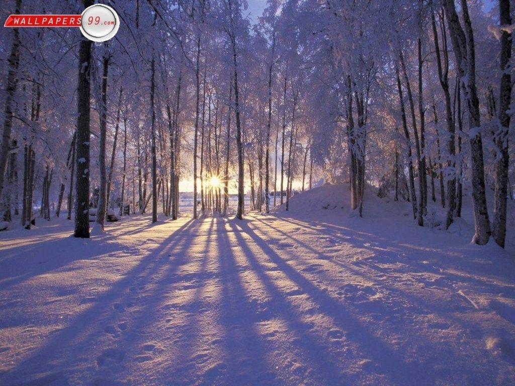 10 New Winter Scene Desktop Pictures FULL HD 1920×1080 For PC Background 2020 free download free desktop wallpapers winter scenes wallpaper cave images 1024x768