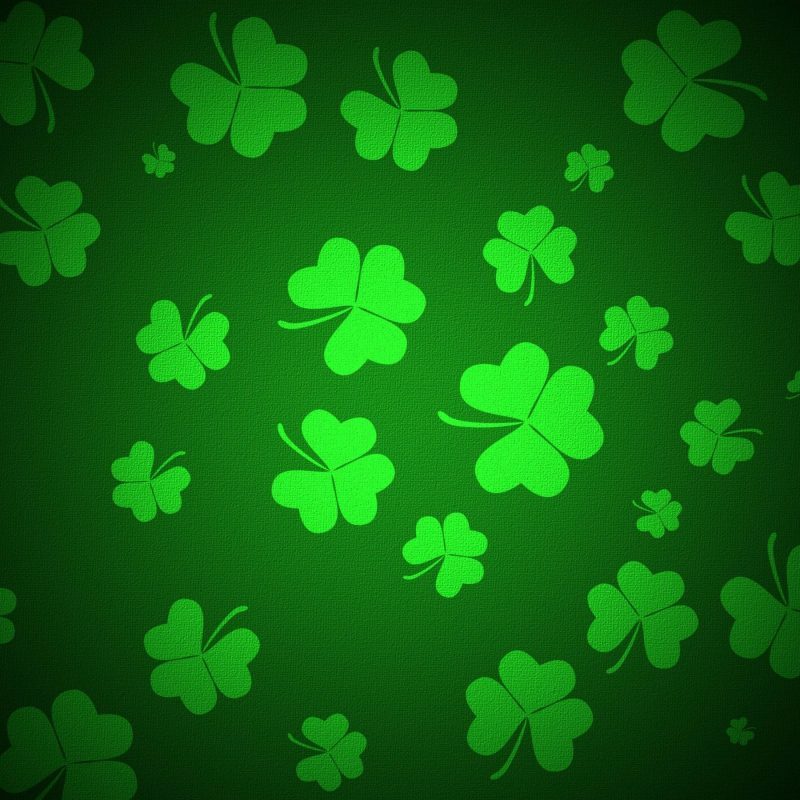 10 Top Four Leaf Clover Wallpaper FULL HD 1920×1080 For PC Background 2020 free download free download four leaf clover wallpapers hd wallpaper wiki 800x800