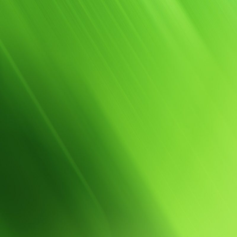 10 Top Green Hd Wallpapers 1080P FULL HD 1080p For PC Desktop 2020 free download free download hd green wallpapers for windows and mac systems 1280 800x800
