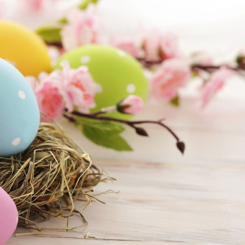 10 Most Popular Free Easter Wallpaper For Computers FULL HD 1080p For PC Background 2018 free download free easter wallpaper hd for desktop collection 16 media file 1 800x800