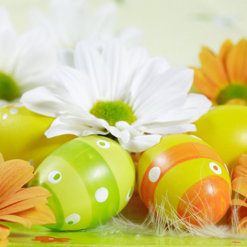 10 Best Easter Desktop Backgrounds Free FULL HD 1080p For PC Background 2018 free download free easter wallpapers for computer wallpaper cave 3 800x800