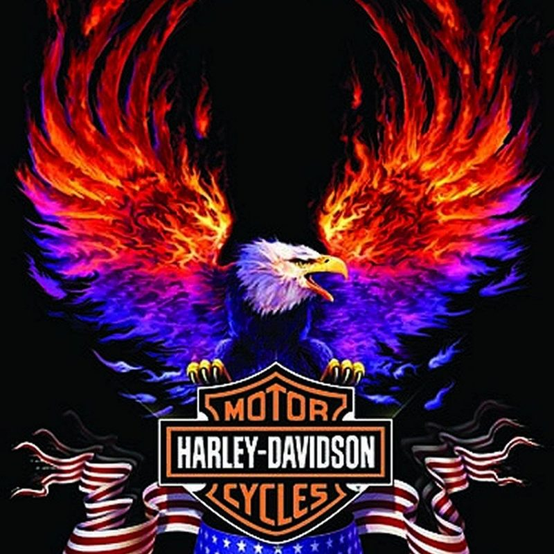 10 Latest Free Harley Davidson Wallpaper FULL HD 1080p For PC Desktop 2018 free download free harley davidson wallpapers group 55 800x800