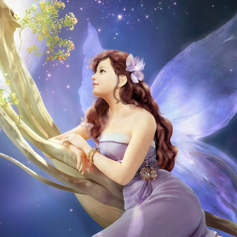10 New Free Fairies Wallpapers Download FULL HD 1080p For PC Background 2018 free download free hd latest fairy wallpapers whatsapp facebook download 800x800