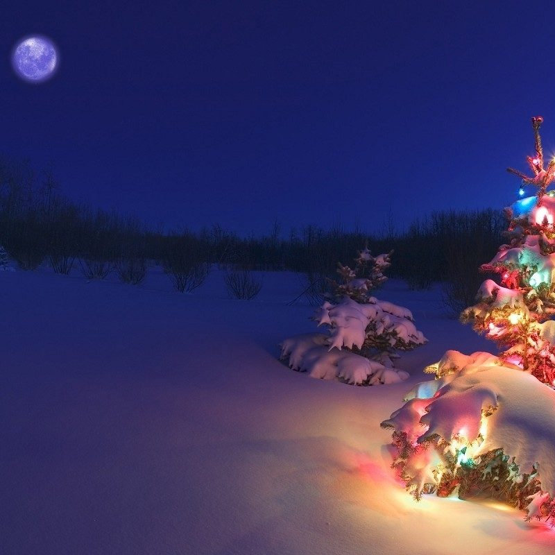 10 Most Popular Free Holiday Backgrounds For Desktop FULL HD 1080p For PC Background 2018 free download free holiday wallpaper background long wallpapers 800x800