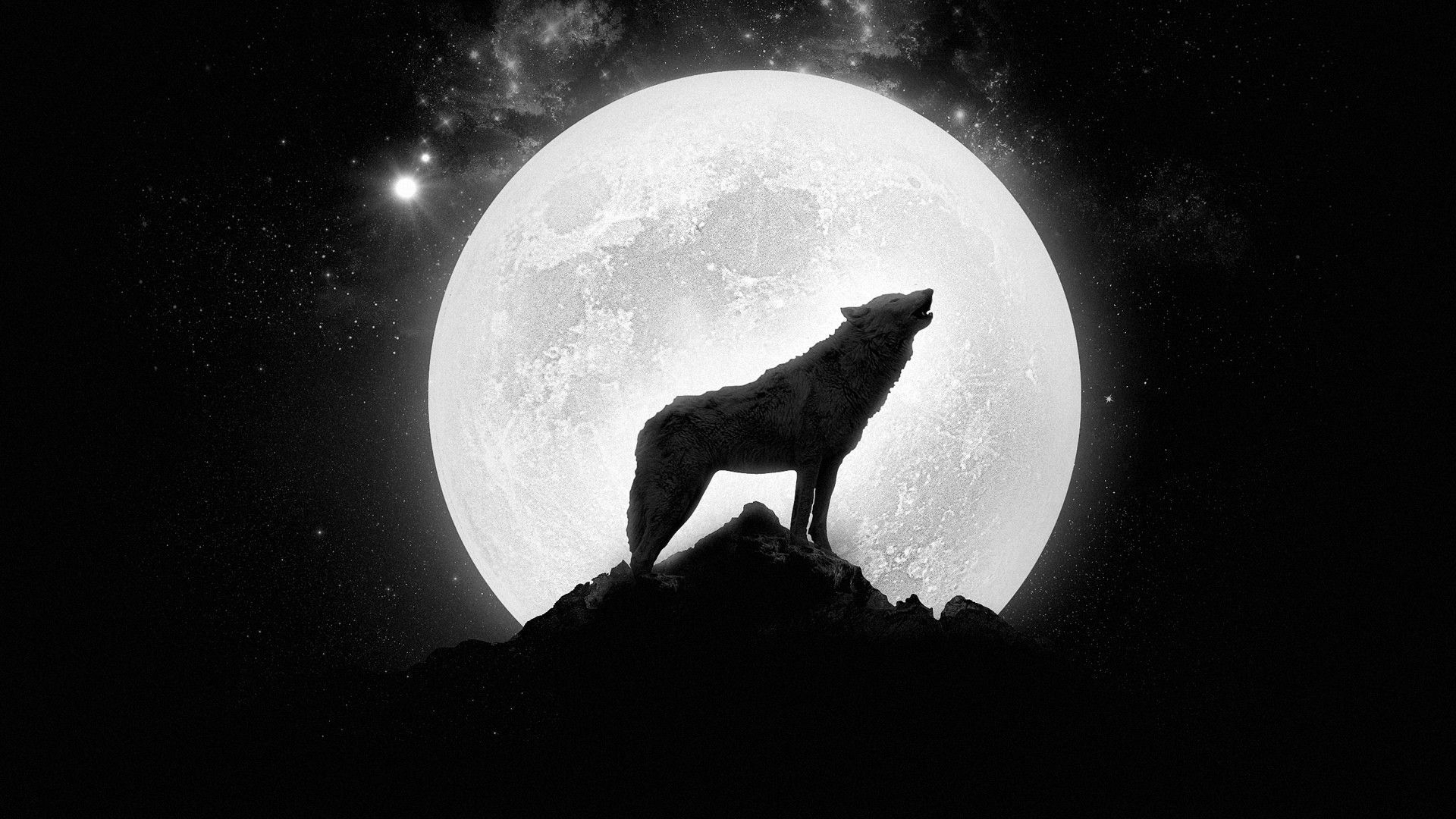 10 New Wolf Howling At The Moon Wallpaper Hd FULL HD 1080p For PC
