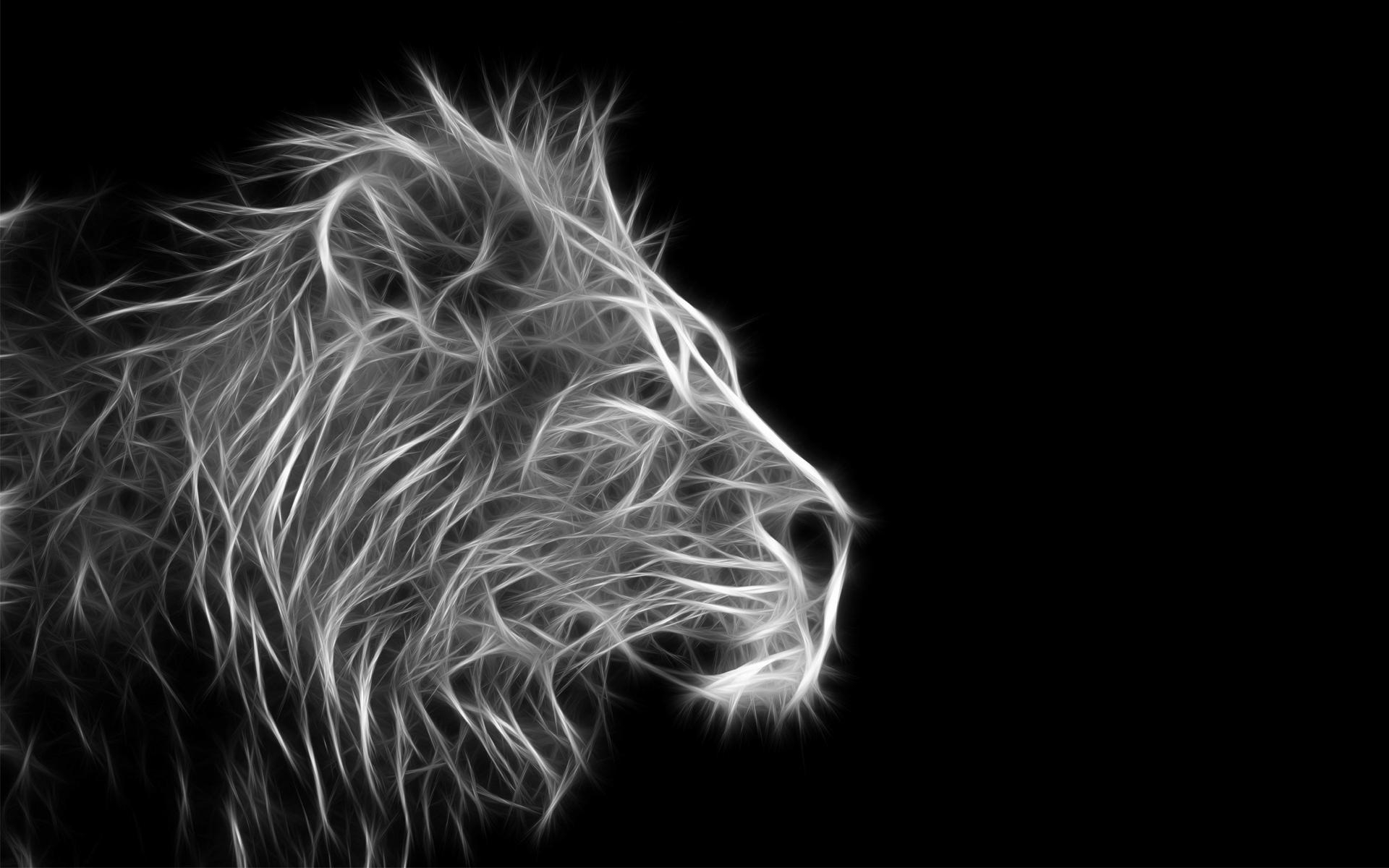 free lion black and white backgrounds « long wallpapers