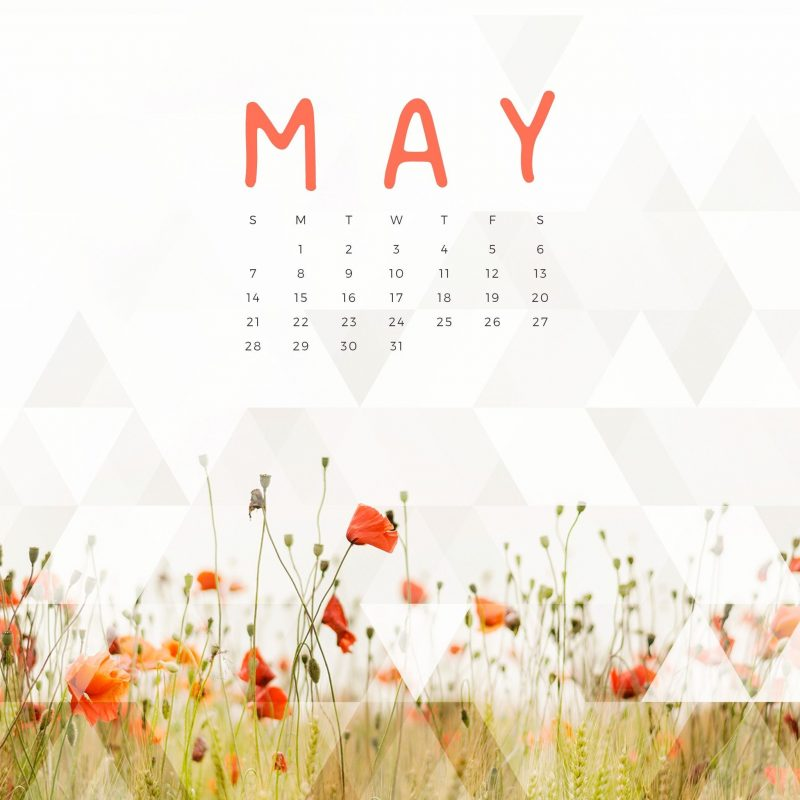 10 Top May 2017 Calendar Wallpaper FULL HD 1080p For PC Background 2018 free download free may 2017 calendar for desktop ipad and iphone kalender 800x800