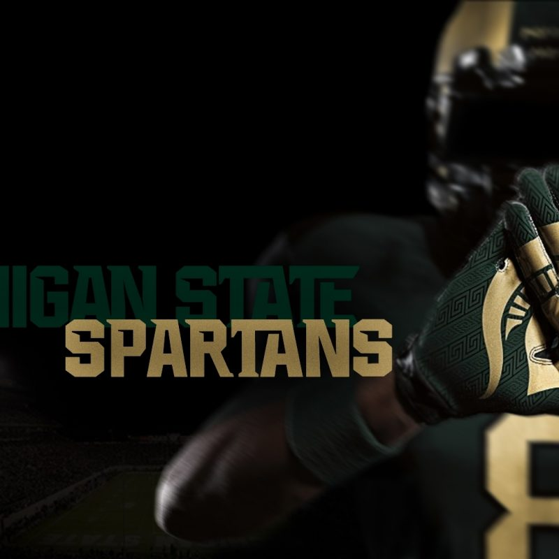 10 Best Michigan State Hd Wallpaper FULL HD 1920×1080 For PC Background 2018 free download free michigan state wallpaper 21287 1680x1050 px hdwallsource 800x800