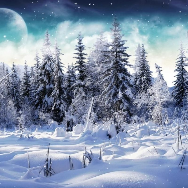 10 Latest Winter Wonderland Screensavers Free FULL HD 1920×1080 For PC Desktop 2018 free download free microsoft screensavers winter scene download cold winter 1 800x800