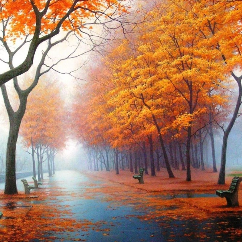 10 Most Popular Free Autumn Wallpaper For Computer FULL HD 1920×1080 For PC Background 2018 free download free nice desktop wallpapers in high quality 3 800x800