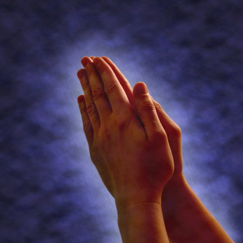 10 Best Images Of Praying Hands FULL HD 1080p For PC Background 2018 free download free praying hands images pictures and royalty free stock photos 800x800