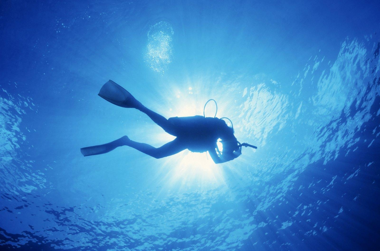 10 best scuba diving wallpaper high resolution full hd 1080p for pc