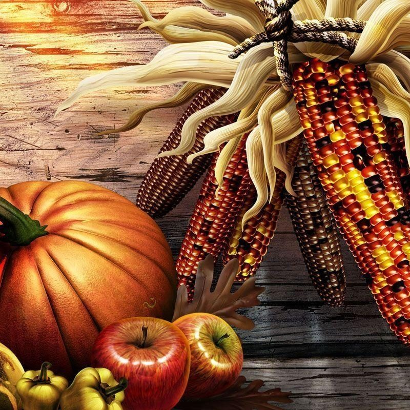 10 Top Free Thanksgiving Desktop Wallpapers Backgrounds FULL HD 1920×1080 For PC Desktop 2018 free download free thanksgiving computer wallpaper backgrounds wallpaper cave 1 800x800