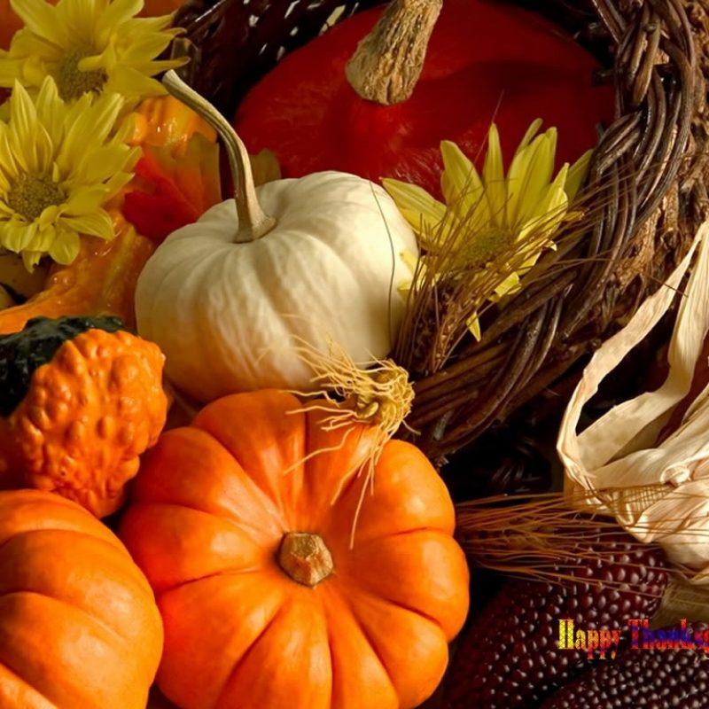 10 Top Free Thanksgiving Screensavers Wallpaper FULL HD 1080p For PC Desktop 2018 free download free thanksgiving desktop wallpaper and screensavers 1 800x800