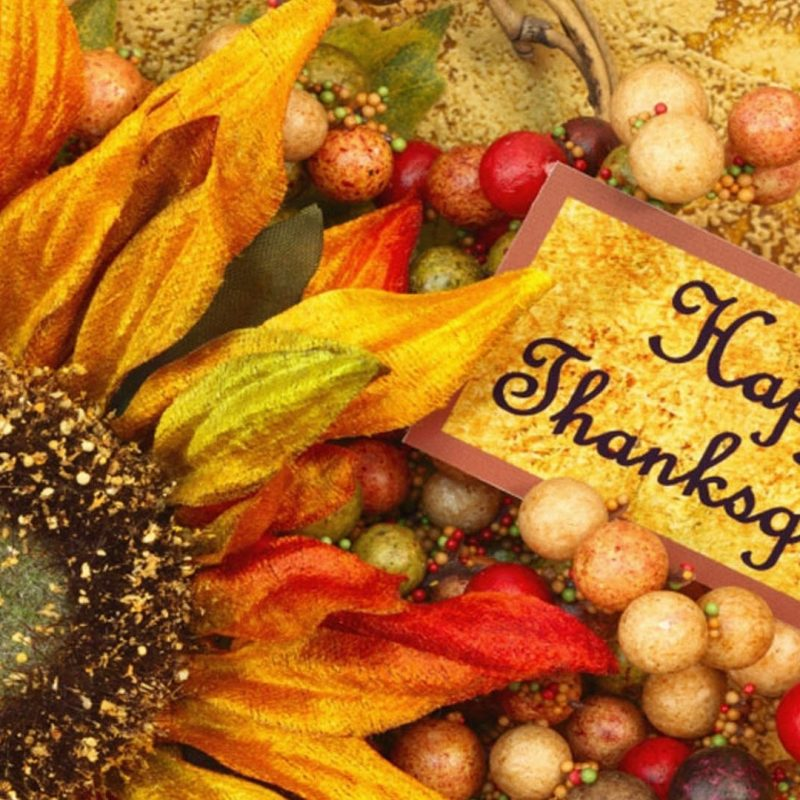 10 Latest Free Thanksgiving Computer Wallpaper FULL HD 1080p For PC Background 2018 free download free thanksgiving desktop wallpapers backgrounds 1 800x800