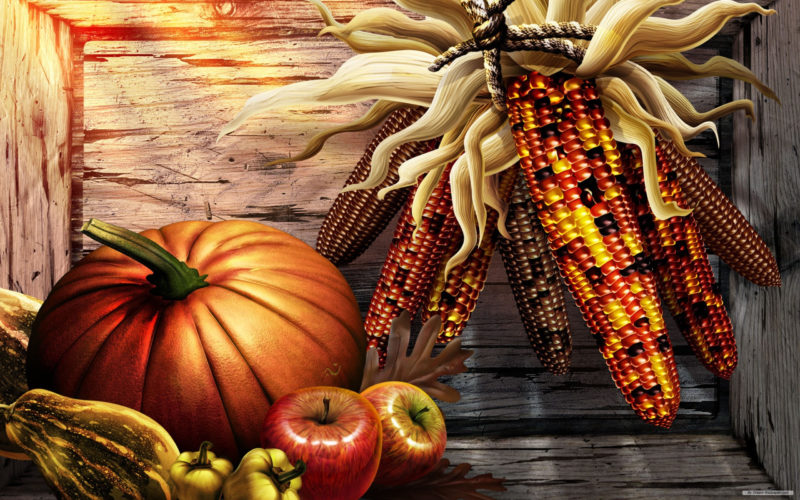 10 Top High Definition Thanksgiving Wallpaper FULL HD 1080p For PC Desktop 2020 free download free thanksgiving photo download high definiton wallpapers windows 800x500
