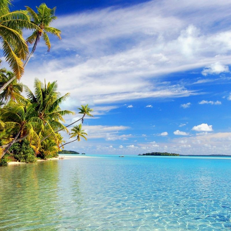 10 Best Tropical Island Wallpaper Hd FULL HD 1080p For PC Background 2020 free download free tropical beach wallpaper for iphone long wallpapers 800x800