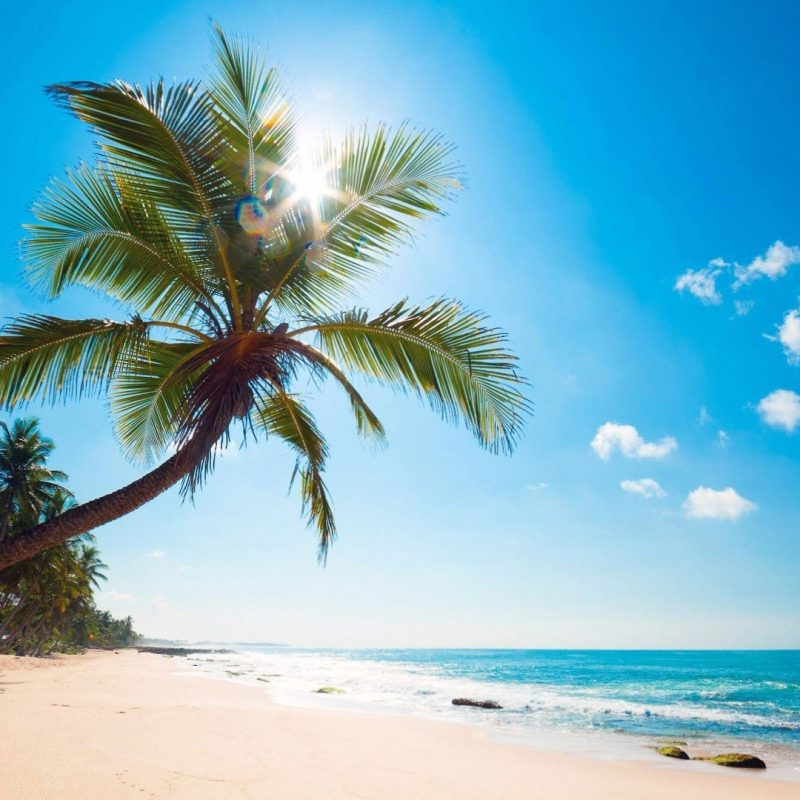 Exotic Beach: 10 Best Tropical Beaches Desktop Wallpaper FULL HD 1920