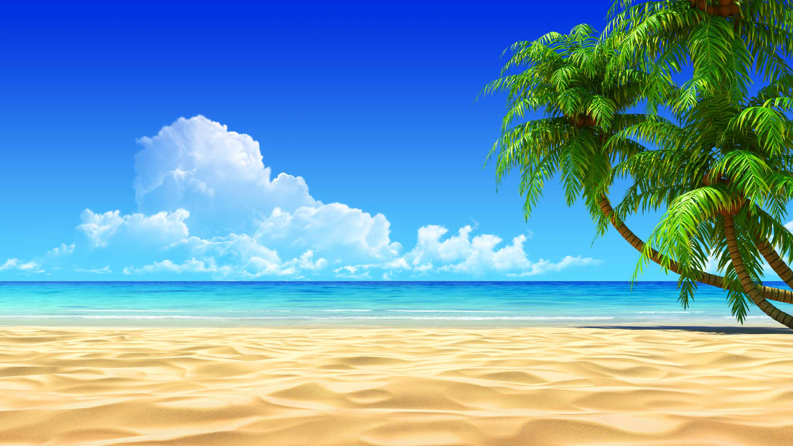 free tropical desktop backgrounds - wallpaper cave