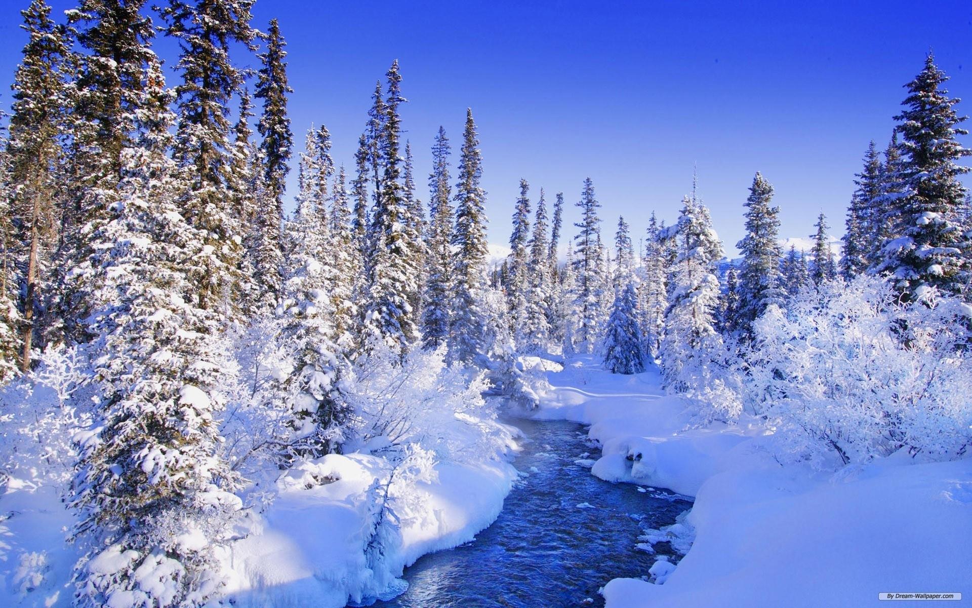 free wallpaper - free nature wallpaper - winter wonderland 10