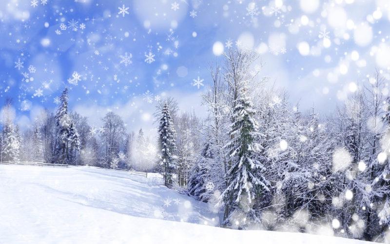 10 New Winter Scene Wallpapers Free FULL HD 1080p For PC Desktop 2020 free download free winter background wallpaper wallpapersafari 800x500