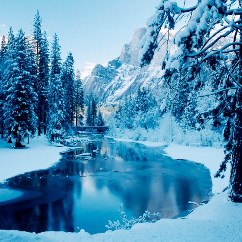 10 Best Winter Nature Wallpapers High Resolution FULL HD 1080p For PC Background 2018 free download free winter nature wallpaper full hd long wallpapers 800x800