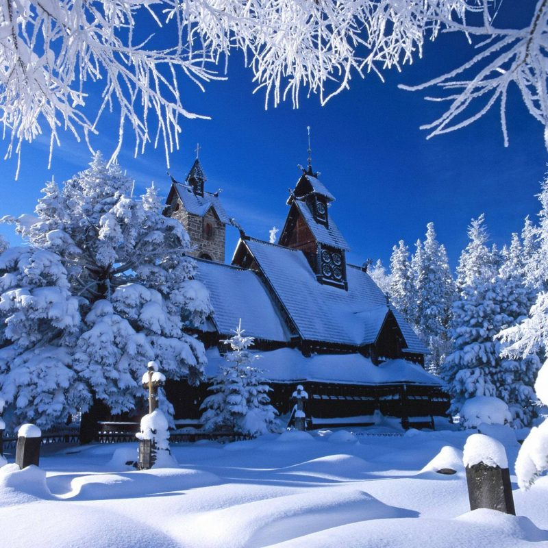 10 Best Winter Nature Wallpapers High Resolution FULL HD 1080p For PC Background 2018 free download free winter nature wallpapers wallpaper cave 800x800