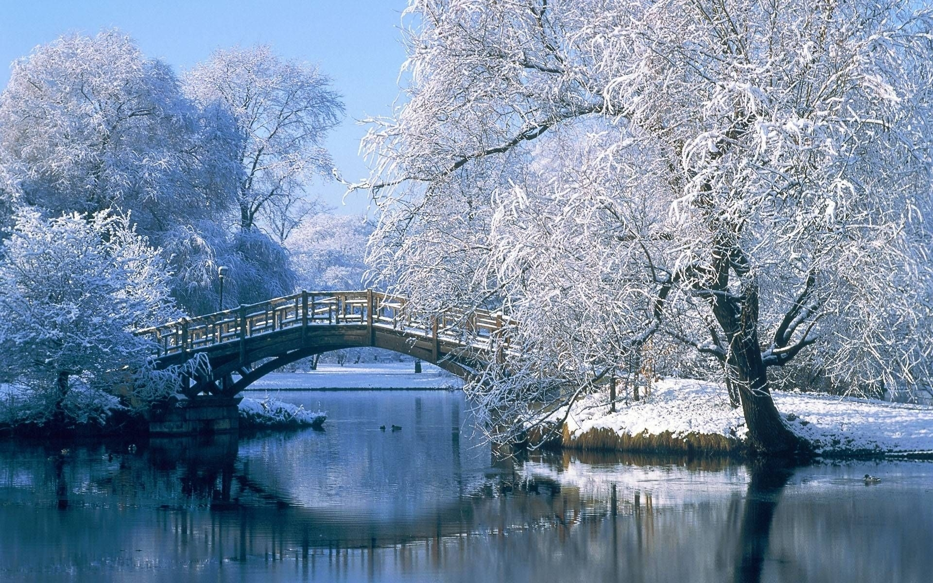 10 Latest Winter Scene Screensaver Free FULL HD 1080p For PC Desktop