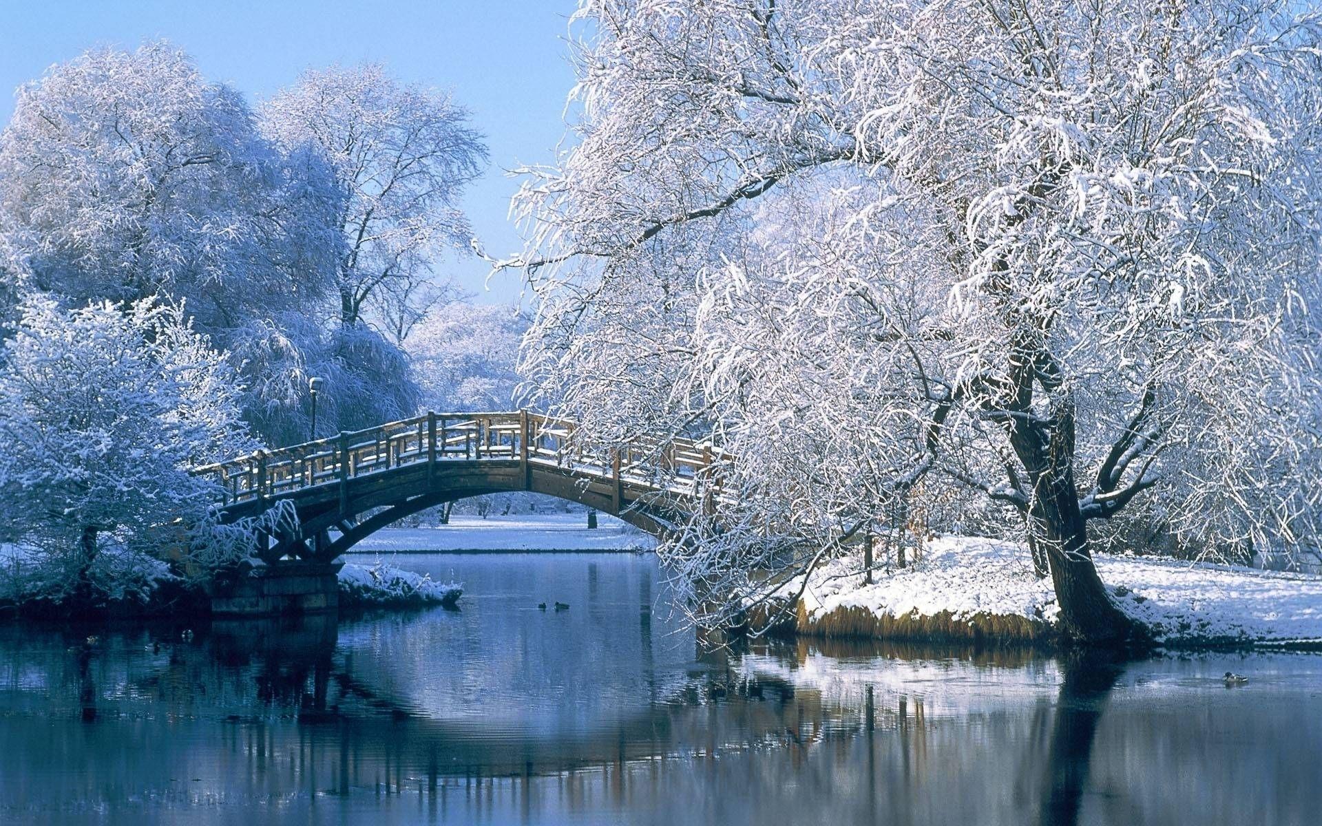 free winter scene wallpaper | wallpapers | pinterest | wallpaper and