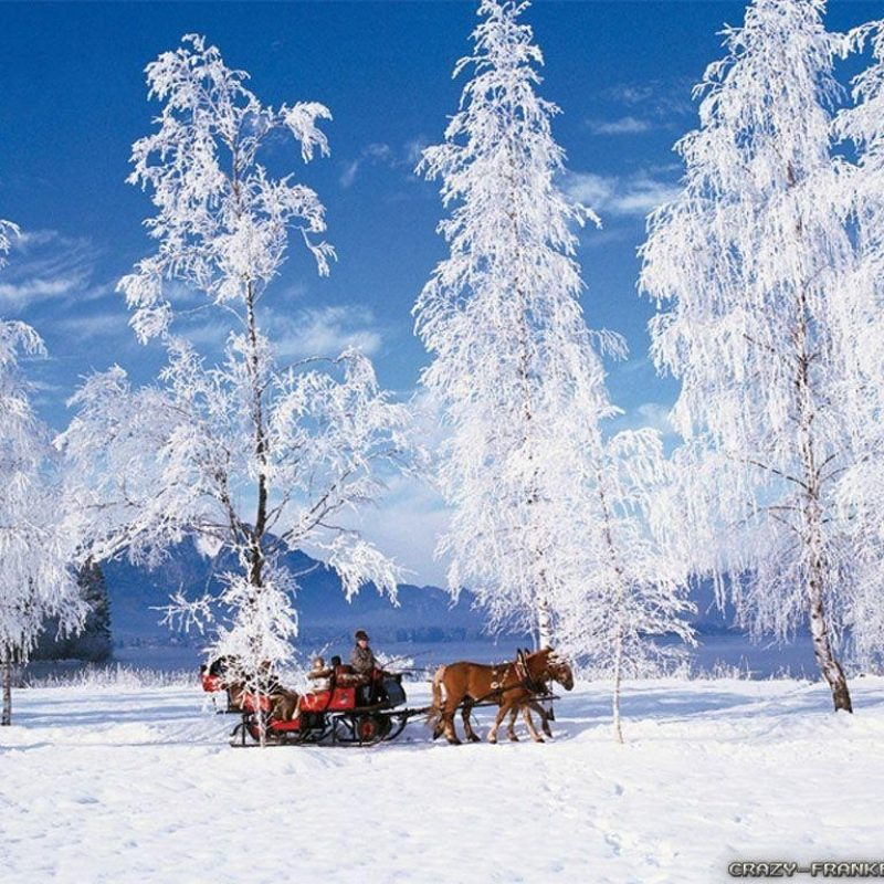 10 Latest Winter Scene Screensaver Free FULL HD 1080p For PC Desktop 2018 free download free winter scene wallpapers wallpaper cave 2 800x800