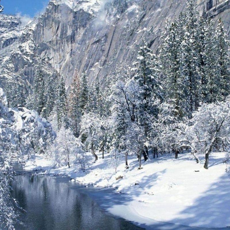 10 Latest Winter Scene Screensaver Free FULL HD 1080p For PC Desktop 2018 free download free winter scene wallpapers wallpaper cave 3 800x800