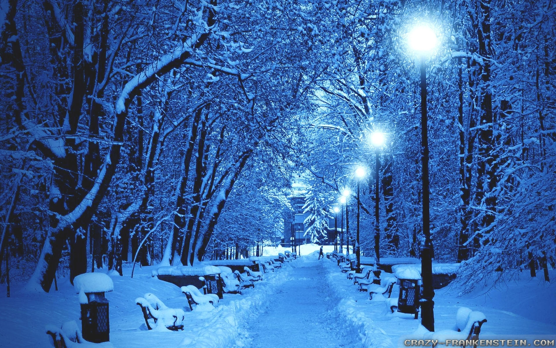free winter scenes wallpaper