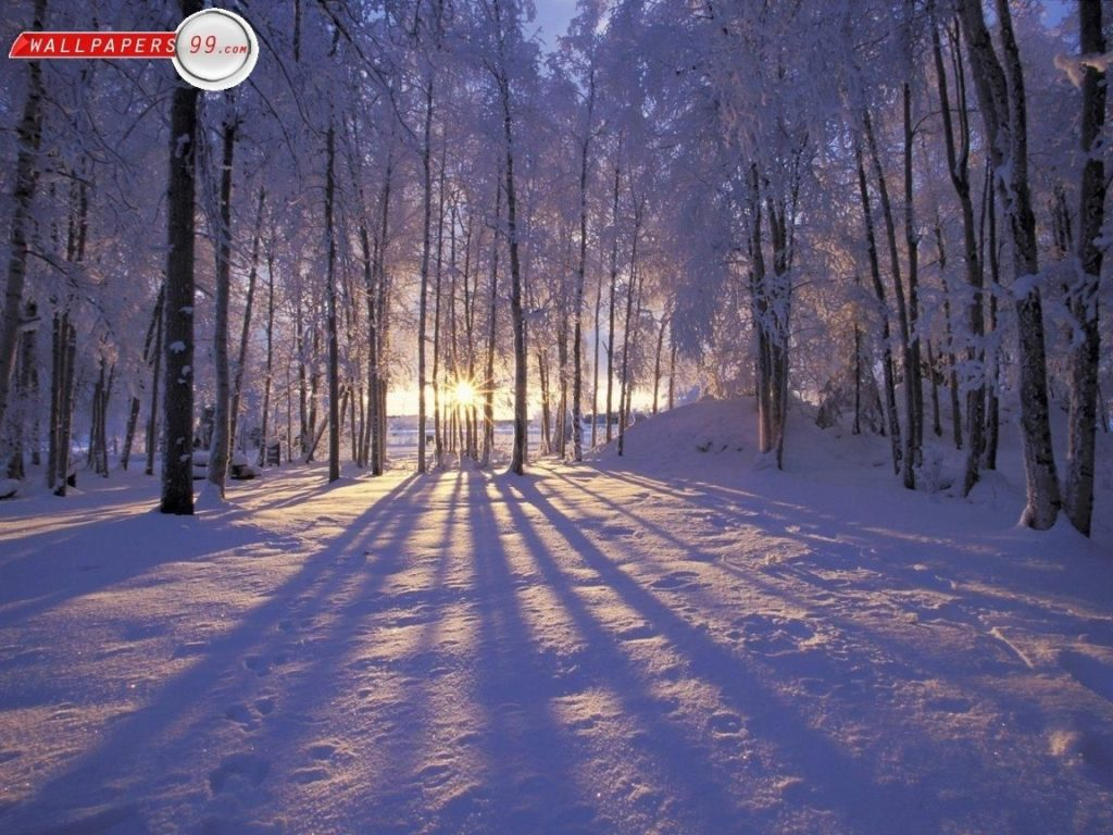 10 Most Popular Free Winter Screensavers Wallpaper FULL HD 1080p For PC Background 2018 free download free winter scenes wallpapers photos pictures images free 1152x864 1024x768