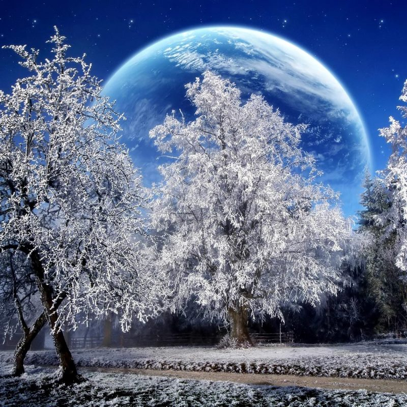 10 New Free Animated Winter Desktop Wallpaper FULL HD 1920×1080 For PC Background 2020 free download free winter wallpapers download group 90 3 800x800