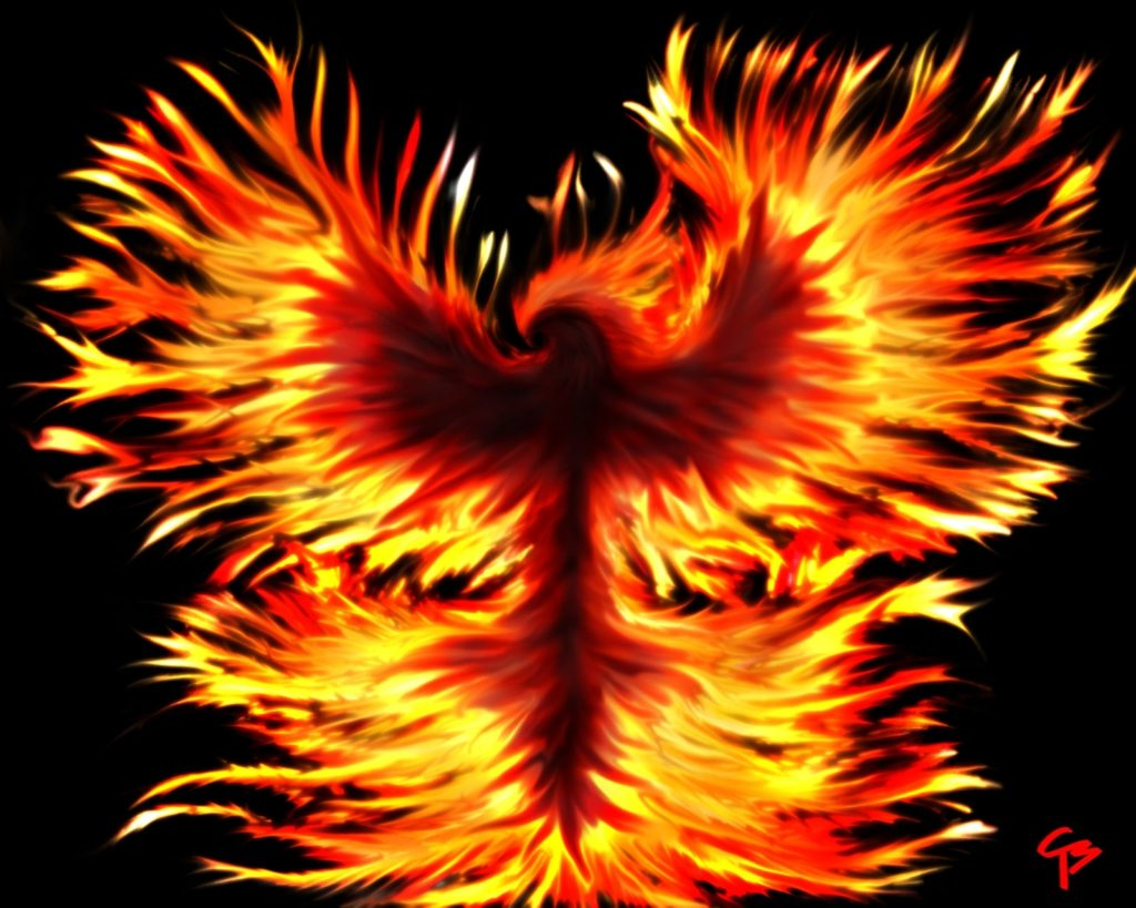 10 Latest Phoenix Rising From The Ashes Wallpaper FULL HD 1920×1080 For PC Background 2020 free download from the ashesrise anewkerberos of hades on deviantart 1024x819