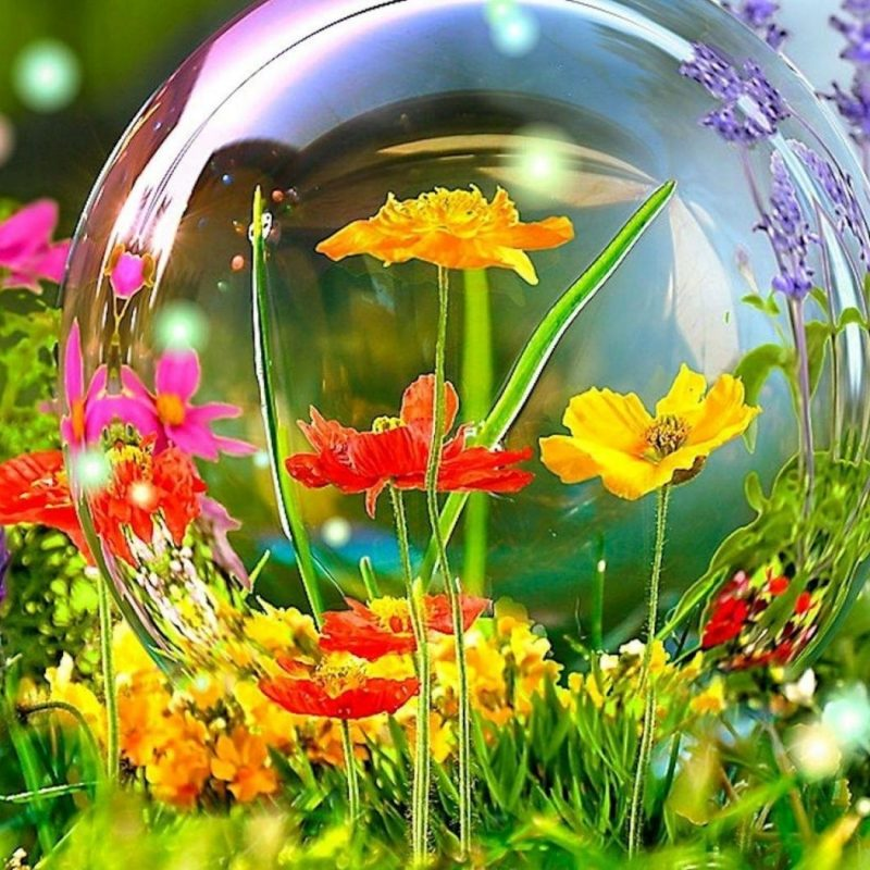 10 Most Popular Spring Wallpaper Hd Widescreen FULL HD 1080p For PC Desktop 2018 free download full hd for widescreen of spring newest wallpaper pics iphone 800x800